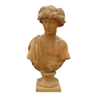 Classical Terracotta Bust Statue of a Young Man