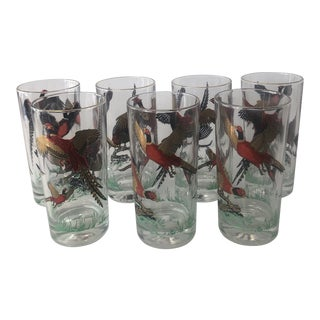 1960s Wild Turkey Highball Glasses - Set of 7 For Sale