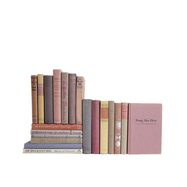 Weathered Lilac & Greige Books - Set of 20 For Sale