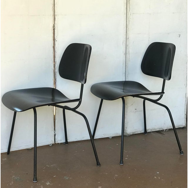 Mid-Century Modern 1950s Eames Ebony Plywood Dcm Side Chair - a Pair For Sale - Image 3 of 7