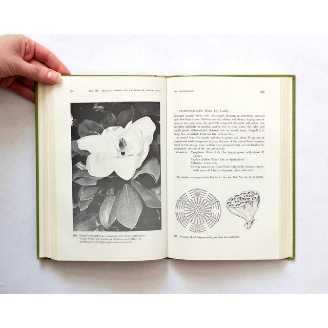 Paper 1967 Vintage Taxonomy of Flowering Plants Book For Sale - Image 7 of 11