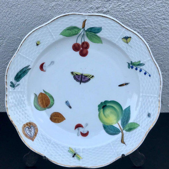 Three Antique European Naturalistic Porcelain Plates For Sale In West Palm - Image 6 of 13