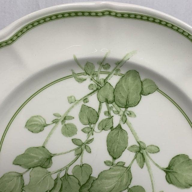 "Ceramic 1960s Richard Ginori ""Fresh Herbs - Oregano"" Salad Plate For Sale - Image 7 of 12"