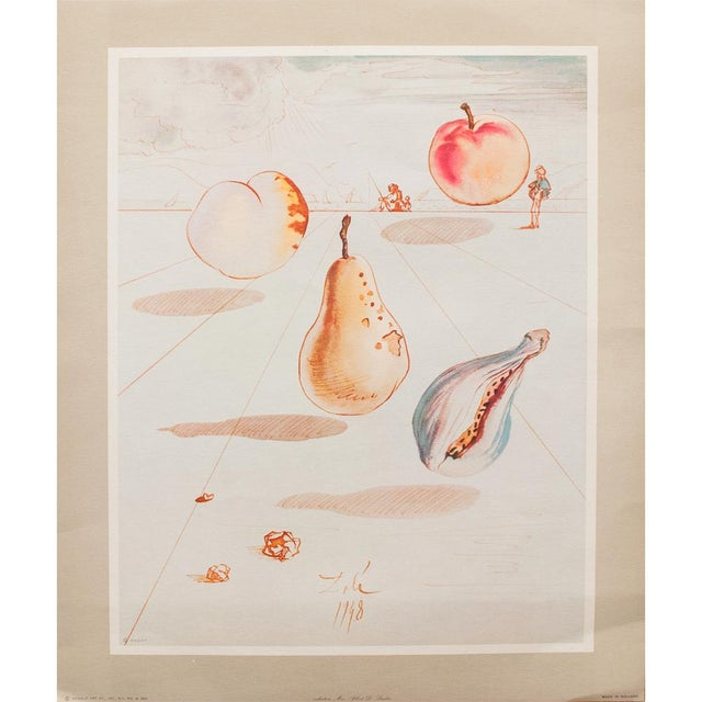 1955 Dali Fruits Original Period Lithograph From the Mrs. Albert D. Lasker Collection For Sale - Image 13 of 13