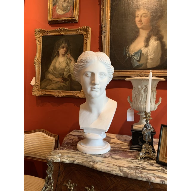 Grand Tour Neoclassical Style Large Plaster Bust of Aphrodite For Sale - Image 3 of 11
