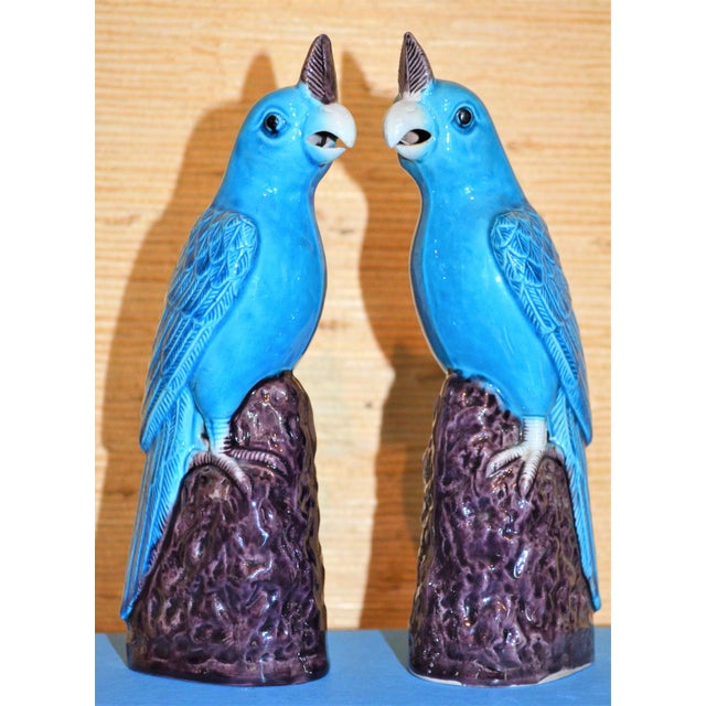 Asian 1950s Chinese Turquoise Porcelain Parrot Figurines - a Pair For Sale - Image 3 of 9