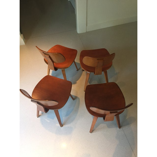 thonet schoolhouse wood chairs set of 8 chairish