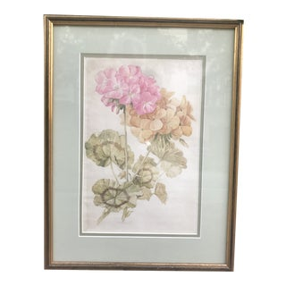 Original Watercolor Still Life Painting of Pink Geraniums For Sale