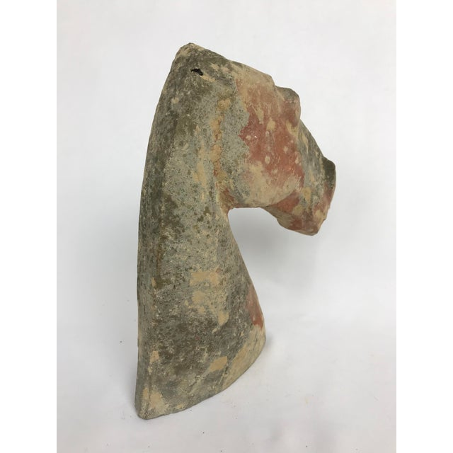 Han Dynasty Style Pottery Horse Head For Sale - Image 4 of 5