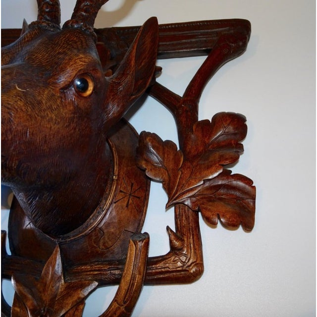 Brown 19th Century Antique Black Forest Carving of Deer Head For Sale - Image 8 of 9