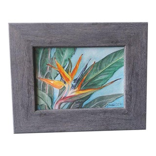 """""""Bird of Paradise"""" Contemporary Tropical Floral Still Life Watercolor Painting by Pete Lam, Framed For Sale"""