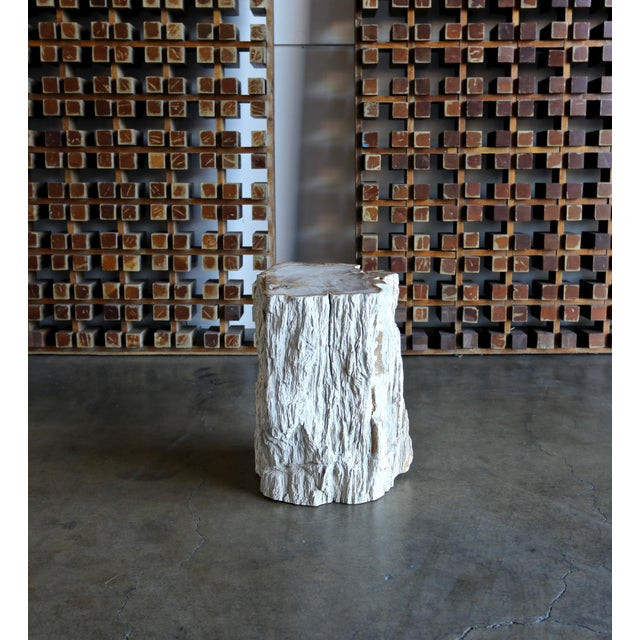 Late 20th Century Petrified Wood Side Table For Sale - Image 5 of 12