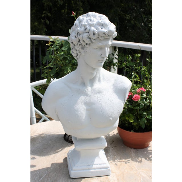 Large Scale Bust of David For Sale - Image 13 of 13