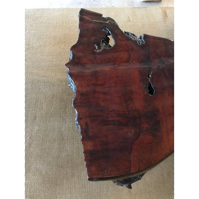 Modern Vintage Burl Wood Live Edge Slab Coffee Table For Sale - Image 3 of 9