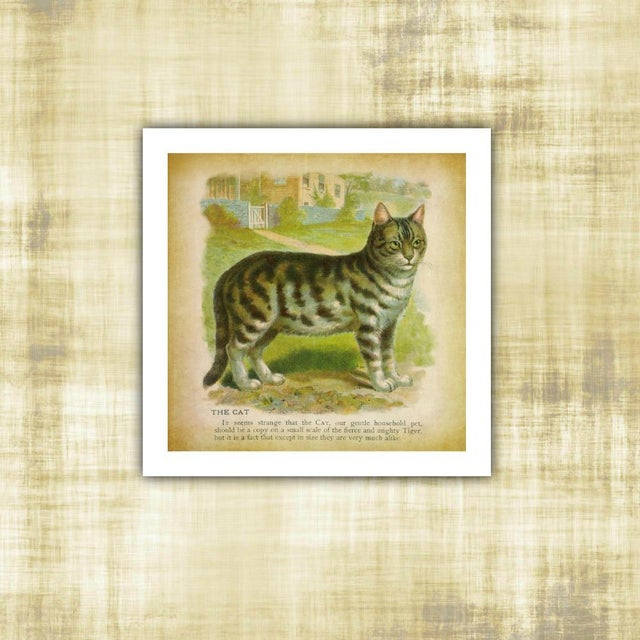 French Vintage Cat Archival Print For Sale - Image 3 of 3