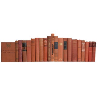 Sienna American History Book Set, (S/21) For Sale
