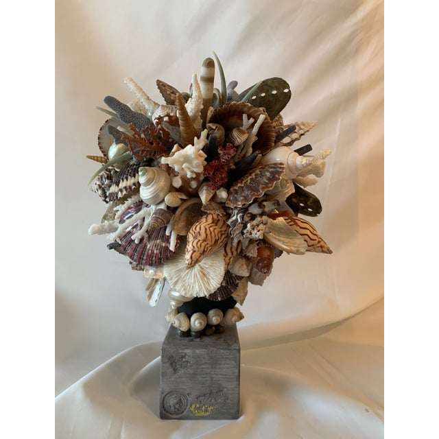 Contemporary Shell Hygiea Noire For Sale - Image 3 of 8