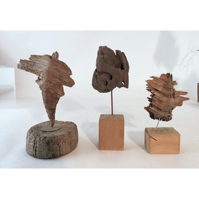 Collection of driftwood sculptures from the estate of a local Gloucester, MA artist. These were crafted from shards of...