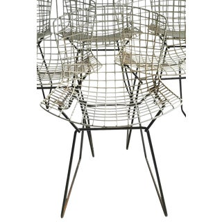 1950s Vintage Harry Bertoia for Knoll Modernist Wire Bertoia Side Chair For Sale