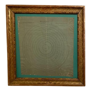 Celestial Chart, France 19th Century with Gilt Frame For Sale