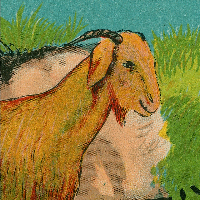 Vintage 'Goat Fabric Label' Archival Print - Image 3 of 3