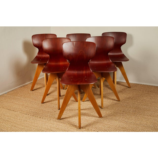 Six molded wood chairs. Used in German schools and universities midcentury. They have a comfortable lumbar curve. Show a...