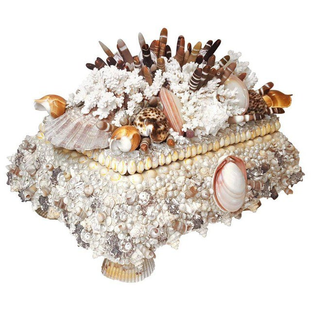 2000s Handmade Exotic Sea Shell Encrusted Large Scale Jewelry Box For Sale - Image 5 of 5