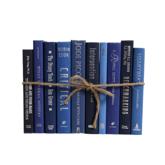 Modern Denim & Silver ColorPak : Decorative Books in Shades of Blue With Silver Accents For Sale
