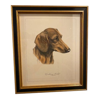 "Framed German Dachshund Lithograph ""Kurzhaariger Dackel"" Signed by S. Reggio For Sale"