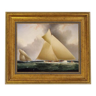 """Mayflower Leading Galatea"" Contemporary Reproduction Print, Framed For Sale"