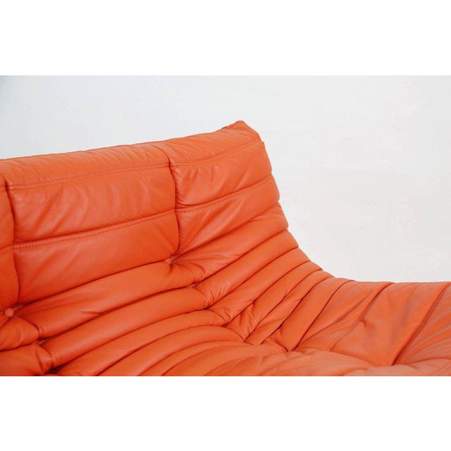 Togo Loveseat in Orange Leather by Michel Ducaroy for Ligne Roset, France For Sale - Image 12 of 13