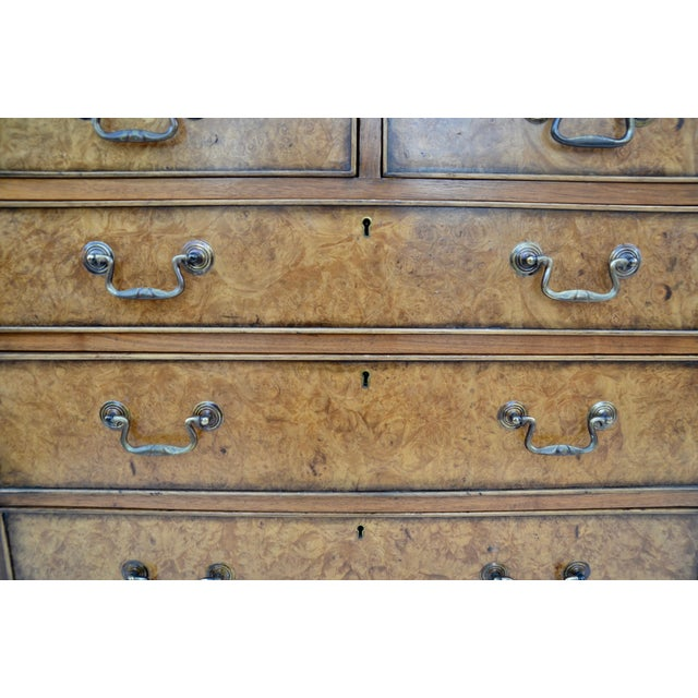 Wood English Georgian Style Walnut Burl Chest of Drawers For Sale - Image 7 of 11