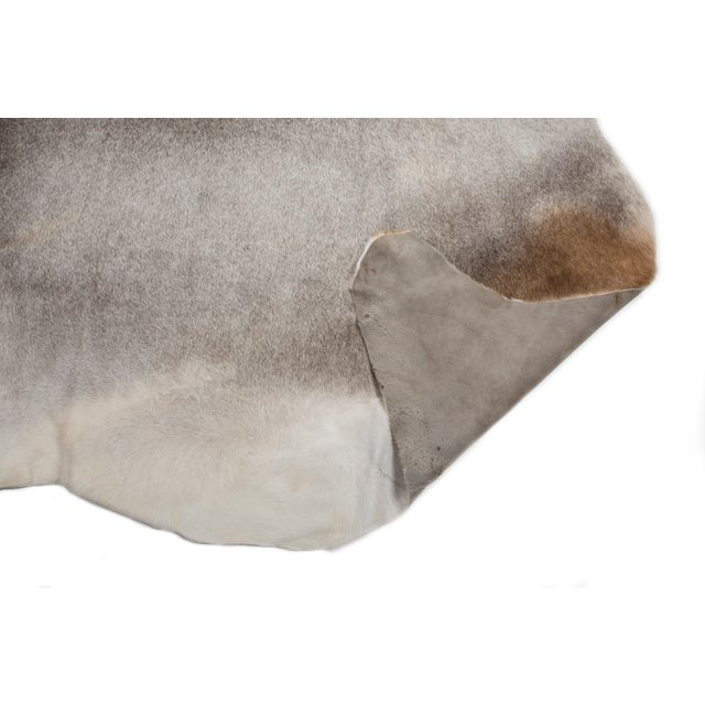 """Authentic Rare Aydin Cowhide Rug, Gray, Handmade in Europe - 6'0""""x7'0"""" For Sale - Image 4 of 11"""