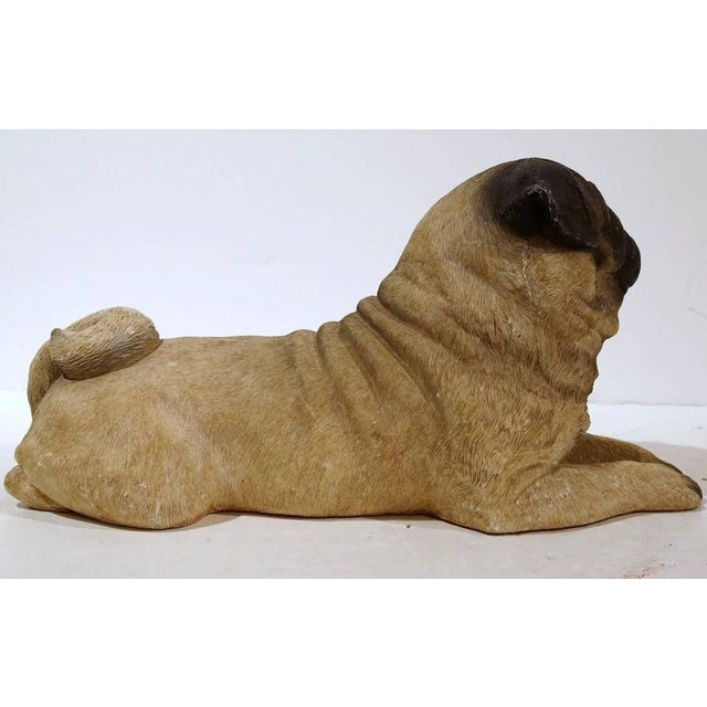1920s Early 20th Century French Terracotta Pug Puppy With Glass Eyes For Sale - Image 5 of 8