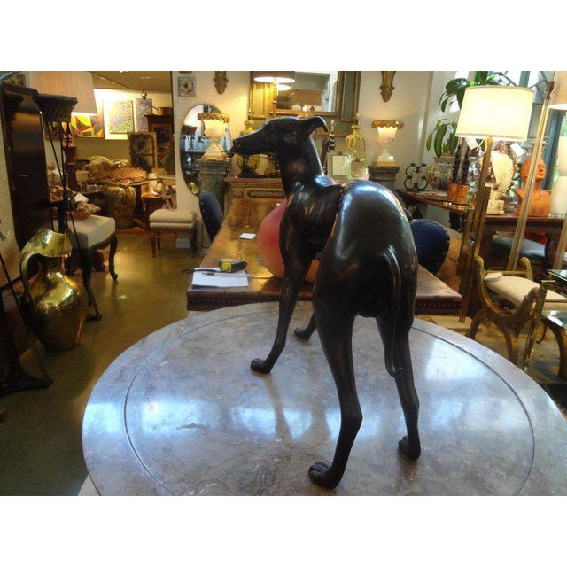 Vintage Mid-Century Bronze Whippet Sculpture For Sale - Image 4 of 7