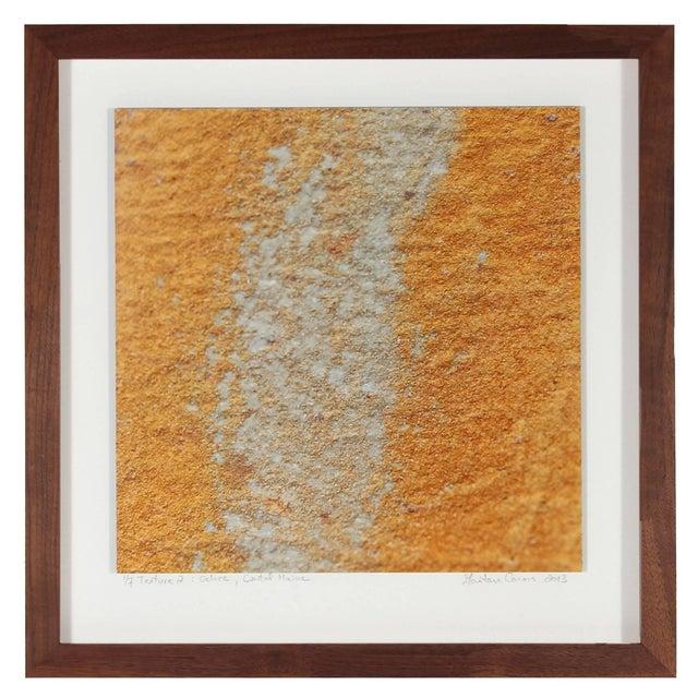"Contemporary Gaétan Caron ""Texture 2: Ochre"" Coastal Maine Photograph, 2013 For Sale - Image 3 of 5"