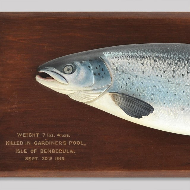 CARVED FISH PLAQUE OF A RARE SEA TROUT - Image 3 of 3