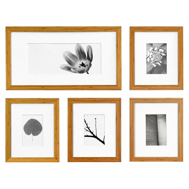 Picturewall Bamboo Frames - Set of 9 - Image 1 of 10