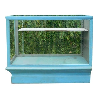 Vintage Botanical Blue Display Case For Sale
