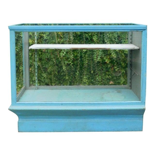 Vintage Botanical Blue Display Case For Sale