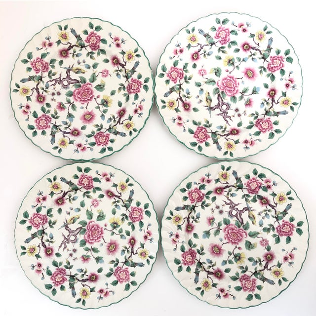 Shabby Chic Old Foley Chinese Rose Staffordshire Dinner Plates - Set of 4 For Sale - Image 3 of 6