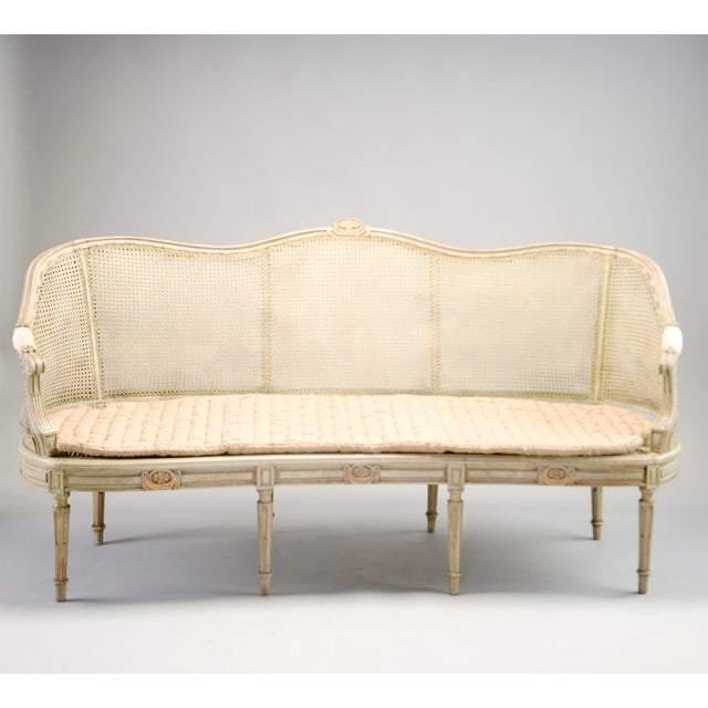 Painted Louis XVI Style Large Caned Settee With Original Cushion For Sale - Image 11 of 11