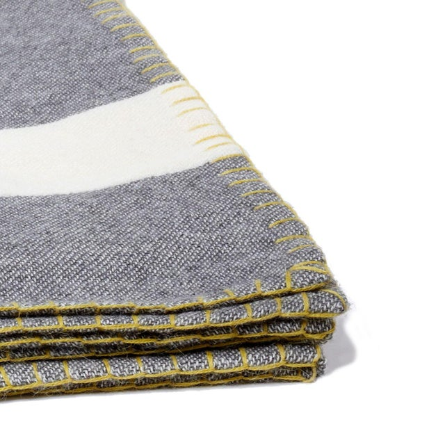 Modern and sophisticated, the Block Stripe Throw adds interest and a pop of color to your couch or favorite lounge chair....