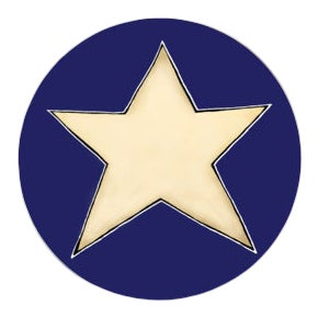 Stargazer on Midnight Blue Coaster For Sale