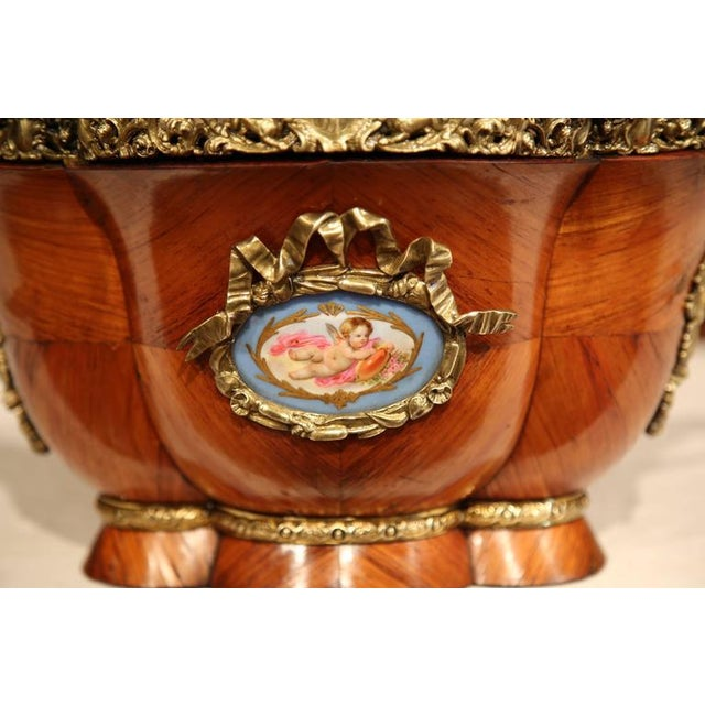 Early 19th Century French Tulipwood & Bronze Jardiniere For Sale - Image 4 of 10