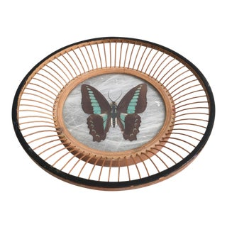 Vintage Boho Chic Pressed Butterfly Glass and Bamboo Dish For Sale