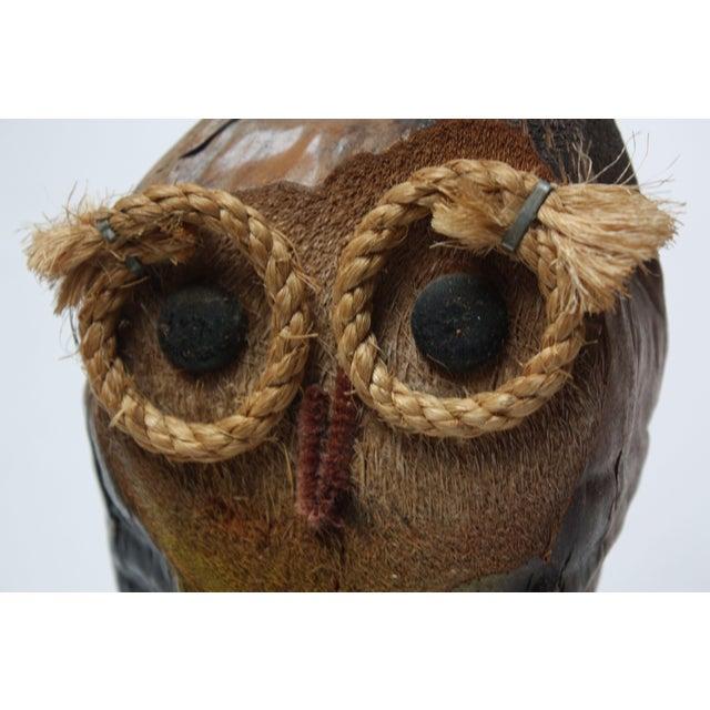 Whimsical Folk Art Coconut Owl Sculpture For Sale - Image 10 of 13