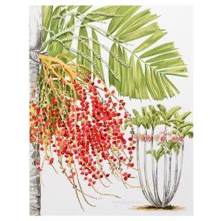 Marion Sheehan McArthur Palm Lithograph