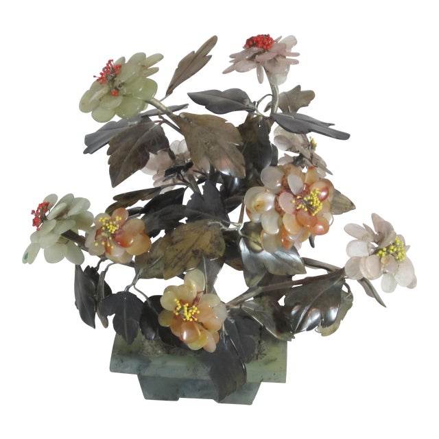 Asian Jade Tree in Planter - Image 1 of 5