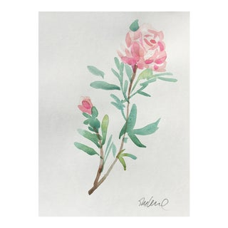 Soft Rose Watercolor Painting For Sale